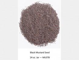 Mustard_Seeds_Black