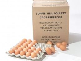 Eggs-Yuppy-Hill-websize
